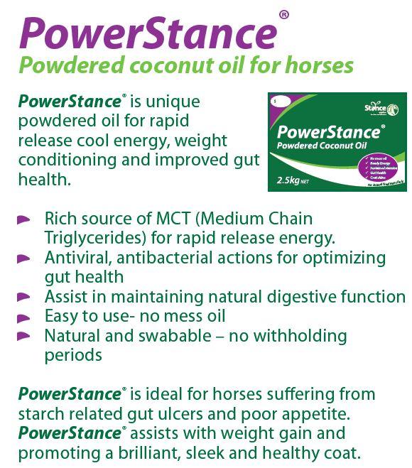 PowerStance 2