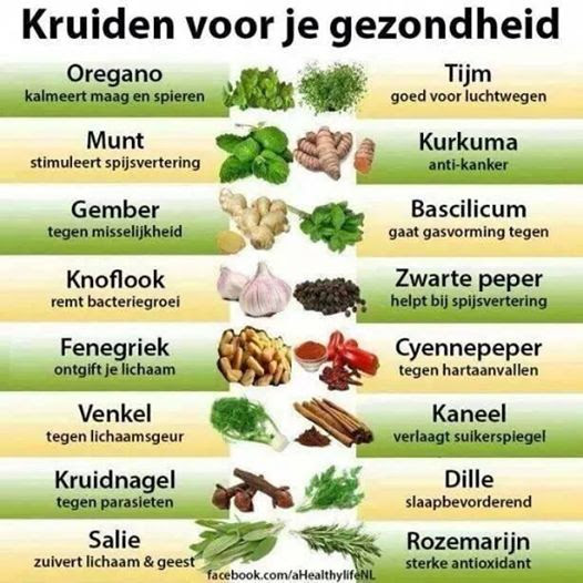 kruiden-voor-je-gezondheid