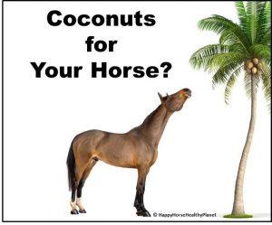 happyhorsehealthyplanet-coconuts_cover